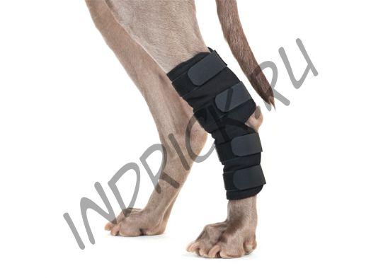 Бандаж на скакательный сустав и коленное сухожилие Back on Track