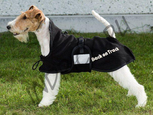 Флисовая попона для собак